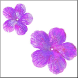 Rainbow Blooms - Purple
