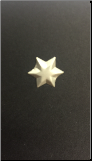 6 Point Star Brads - Brushed Silver (50)